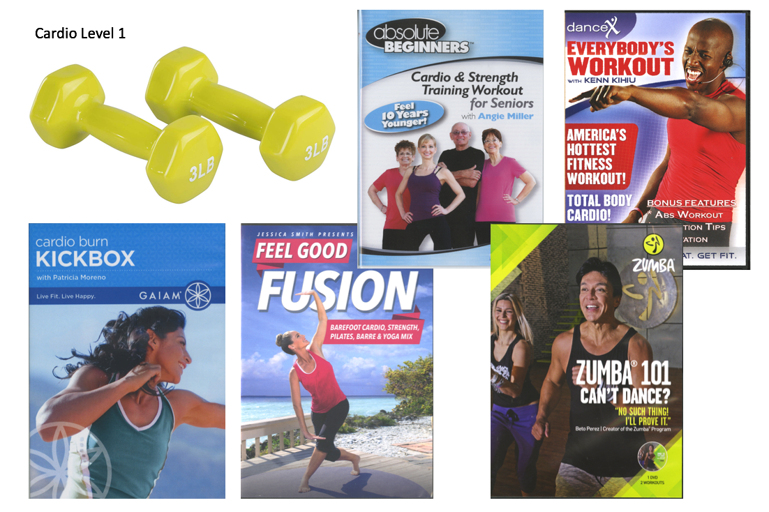 1 pair hand weights, 5 cardio fitness dvds