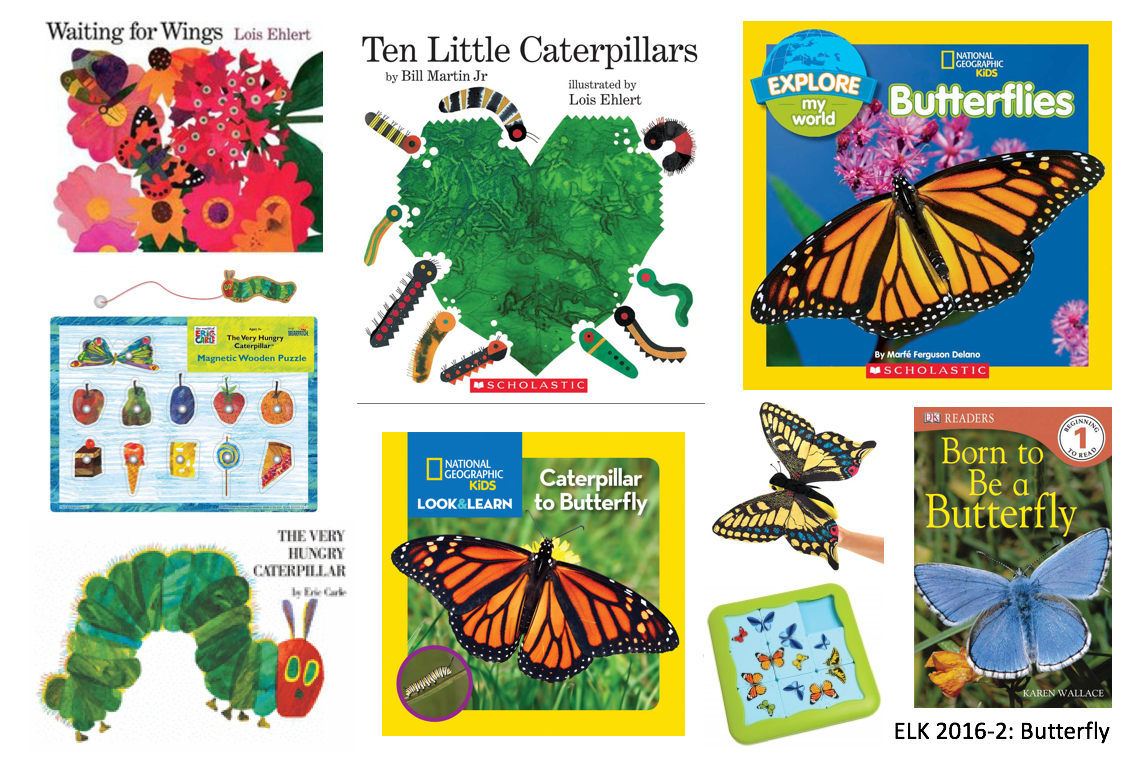 Books, puzzles and games about butterflies